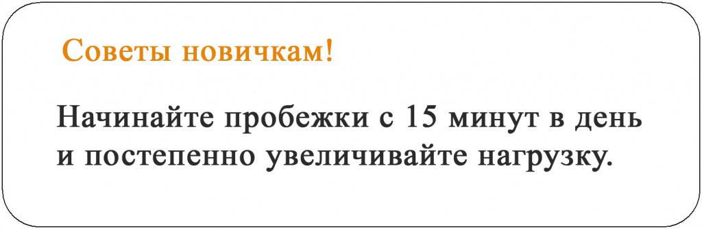 советы новичкам.jpg